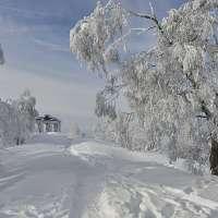 Le Donon, montagne sacrée. Crédit photo : Office de tourisme de la vallée de la Bruche / Stéphane Spach