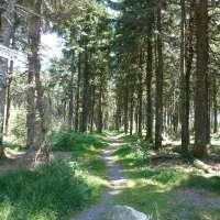 Sentiers balisés de randonnée